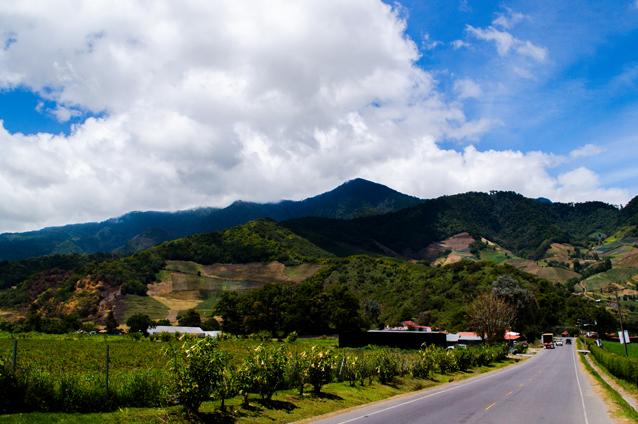 パナマ産コーヒー業界は、パナマ北部の高地帯に位置するチリキ地方を中心としています。この地域はボケテの街と火山に囲まれており、特上コーヒーの栽培に特に適しています。