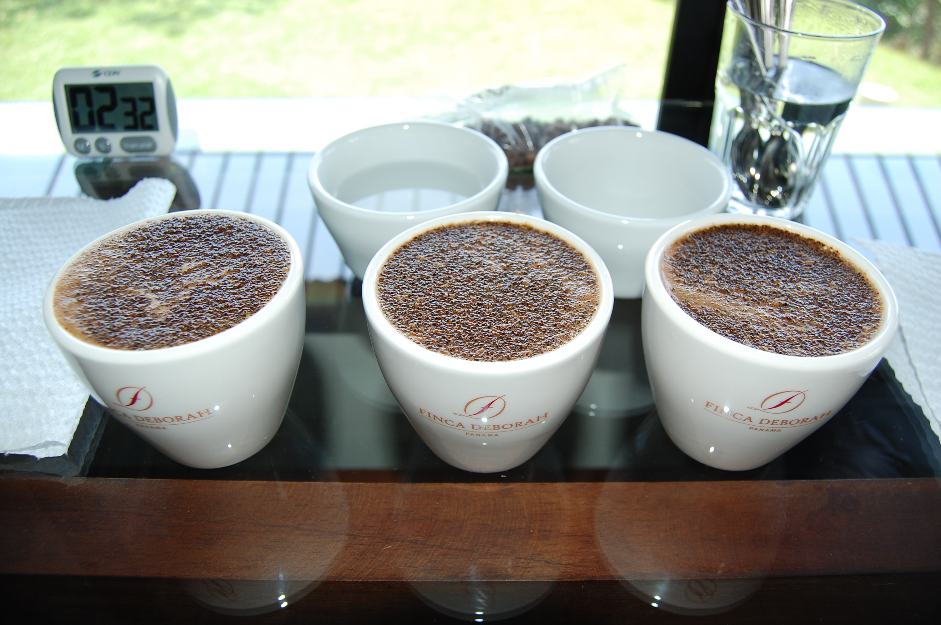Cupping Finca Deborah Geisha Coffee from Panama.